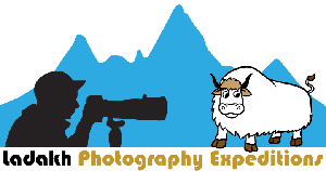 ladakh photography tour and expedition